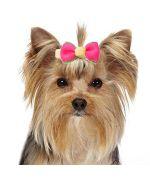 Petite barrette pour chien miniature speciale york et petit chien à poil long rose, rouge, bleu, jaune...pas chere tendance