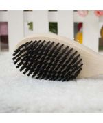 dog brush with spikes