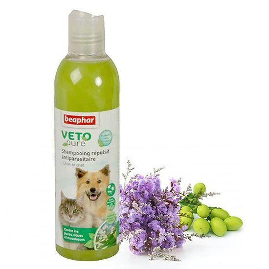 shampooing repulsif chien et chat