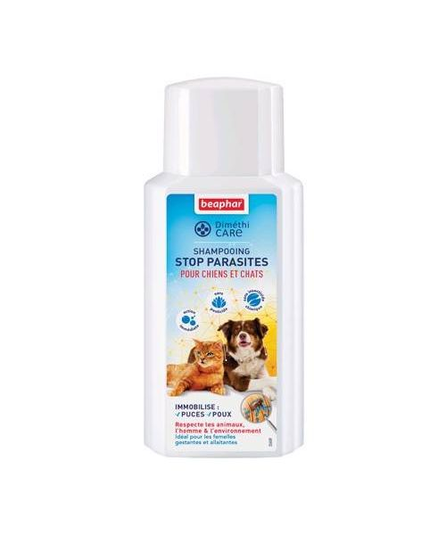 Shampoo anti flea dog cat