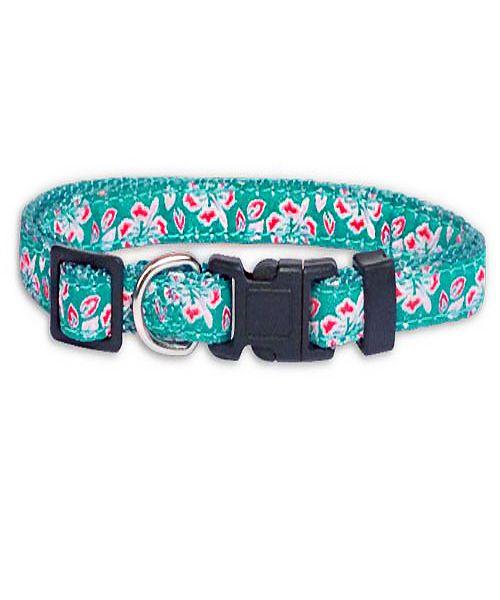 collier hawaien pour chien