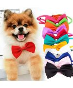 bow tie for dog and cat
