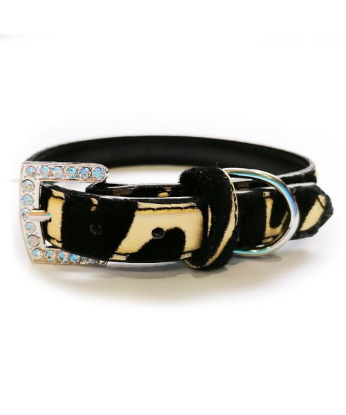 Padded leather rhinestone for small dog and black cat white shitzu leather fur fashion design shop animals