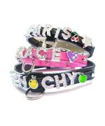 Jewelry cheap for collar and harnesses to personalize with first name cat dog, accessories selling animals cheap and fashion