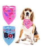 birthday dog accessories