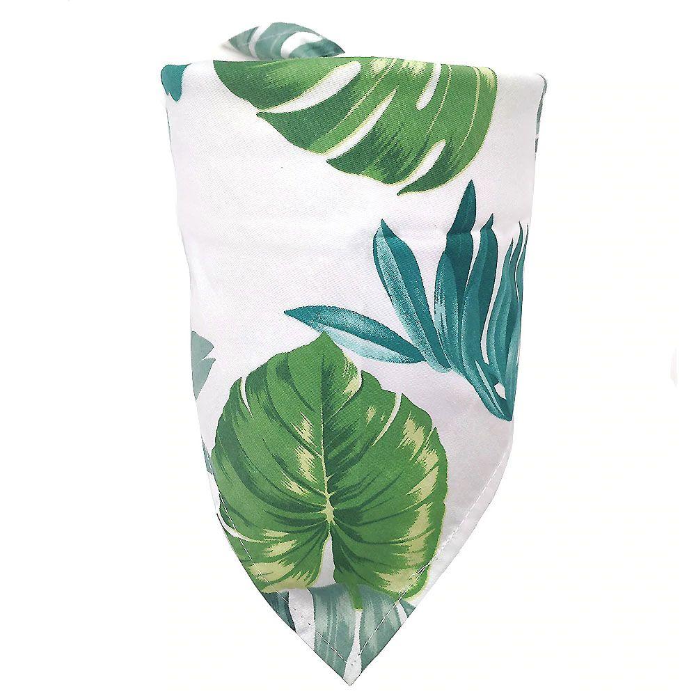 foulard pour chien jack russel