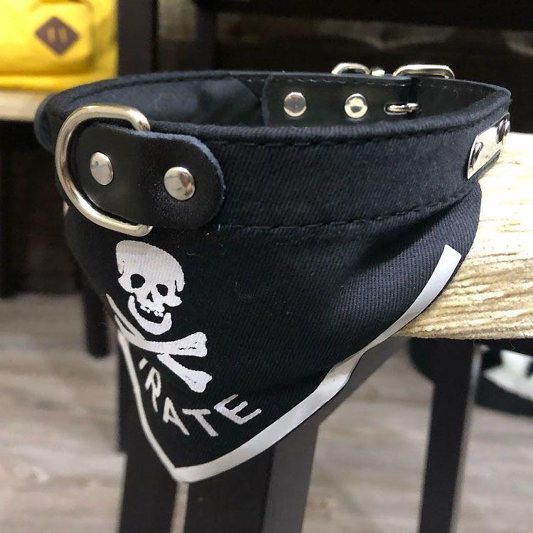 collier bandana pirate pour petit chien