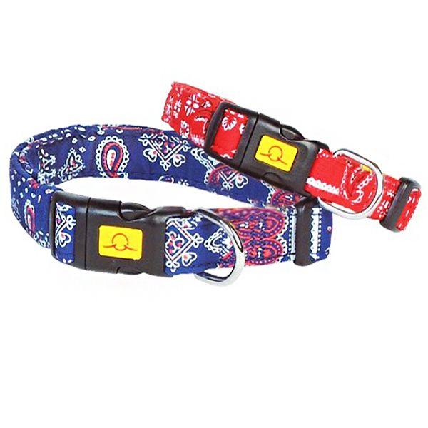 collier tribal pour chien