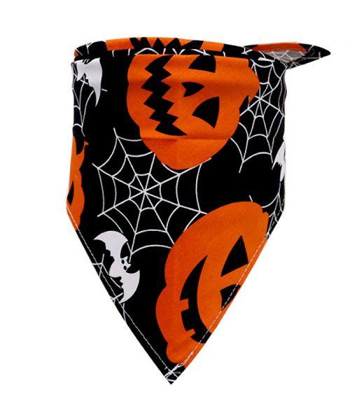 accessoire halloween pour animaux