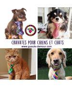 cravates pour chiens