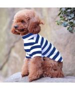 pull pour chien chic