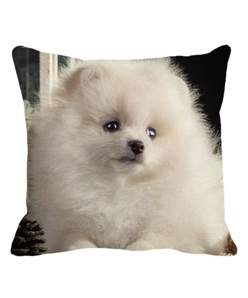 white spitz cushion