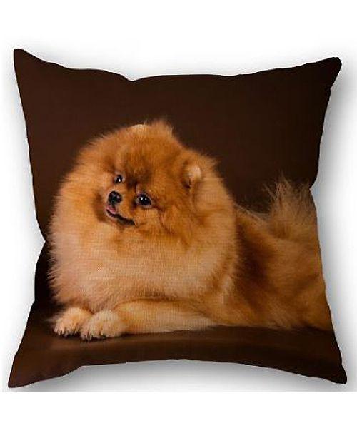 gift spitz cushion