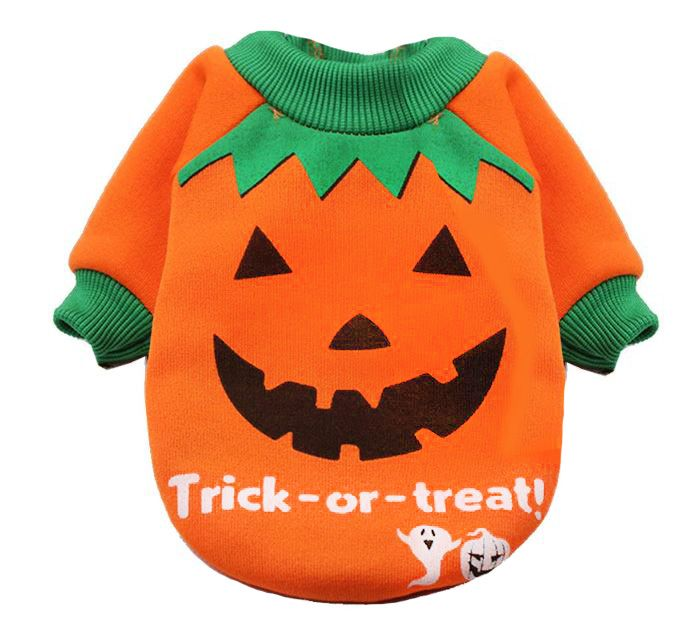 pull halloween pour animaux