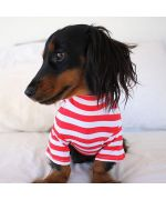 pull mariniere pour chien rouge