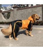 Waterproof dog paws - the polka dot