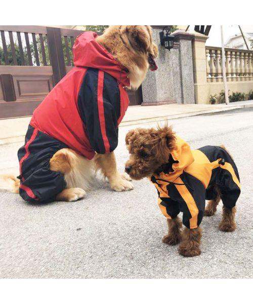 impermeable pour chien avec pattes