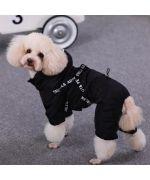 rain suit for dog