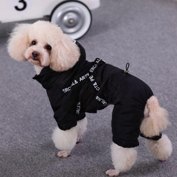 combi de pluie pour chien