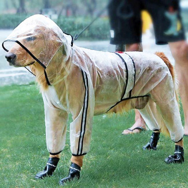 impermeable pour grand chien