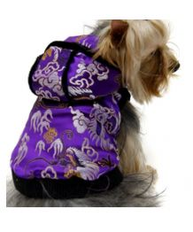 Coat purple asian for cats and dogs
