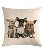 coussin chihuahuas decoration