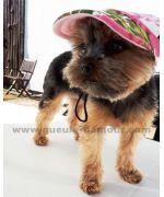 Casquette pour chien mignonne