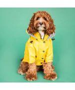 coat for cocker spaniel