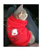 pull de noel pour chat