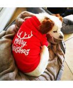 cadeau pour chien de noel