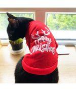 tenue de noel pour chat