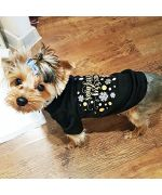 party outfit for yorkie
