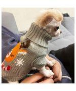 pull pour mini chien