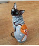 clothes for sphynx cat