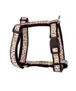 Cute collar leopard dog (20 to 48 cm)
