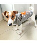 Hooded jacket for dog for chihuahua, shitzu, yorkshire terrier, papillon, pinsher...Paris, Lyon, Monaco, Nice
