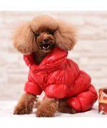 combinaison pour chien pour la neige