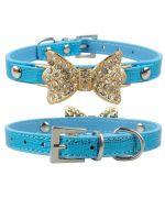 collier bleu pour chien avec strass