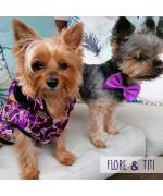 Coat asian pet jacket chnoise dog origal with hood cheap mouth d love