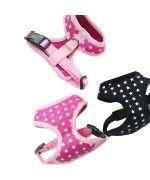 harnais noir pour chien rose