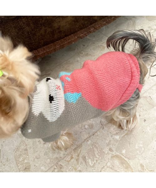 sweater for small dog