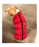 manteau rouge à pattes pour chien