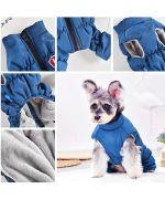 manteau de neige pour chien