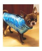 down jacket for chihuahua