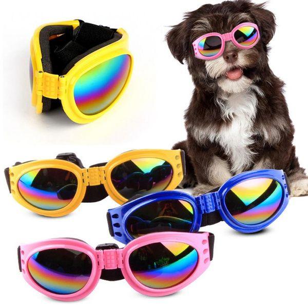 bezel-black-for-dog-sun