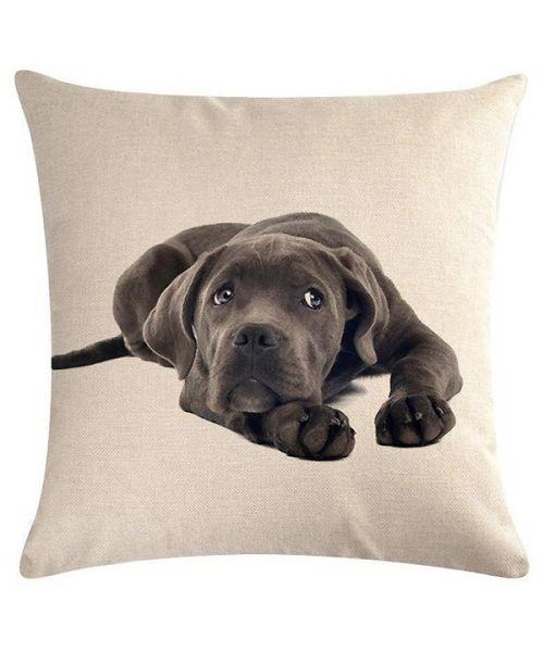 weimaraner cushion