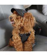 black baseball cap for dog