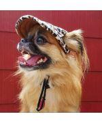 casquette pour petit chien leopard