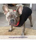 manteau pour chien reversible