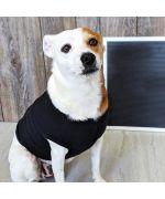 T-shirt personnalisé pour chien et chat